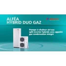 ATLANTIC ALFEA HYBRID DUO GAZ 14 TRI